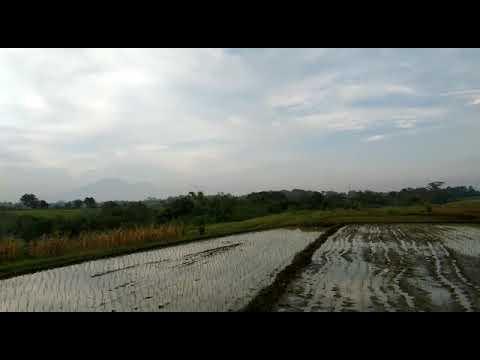 Bali village 🙏(4)